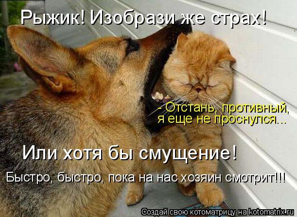 http://kotomatrix.ru/images/lolz/2009/07/22/325914.jpg