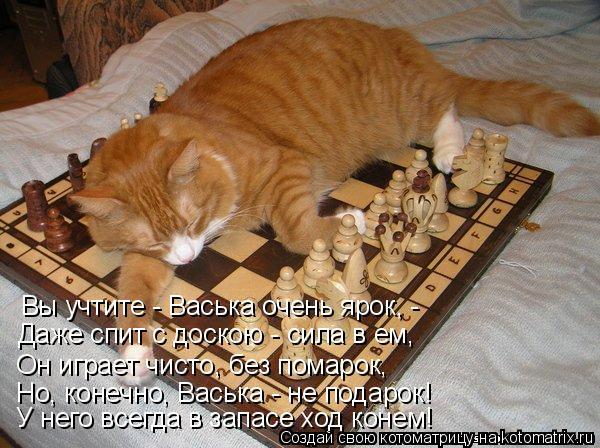 Котоматрица: Вы учтите - Васька очень ярок, - Даже спит с доскою - сила в ем, Он играет чисто, без помарок, Но, конечно, Васька - не подарок! У него всегда в зап