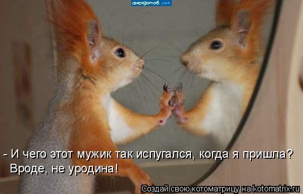 http://kotomatrix.ru/images/lolz/2009/07/22/325968.jpg