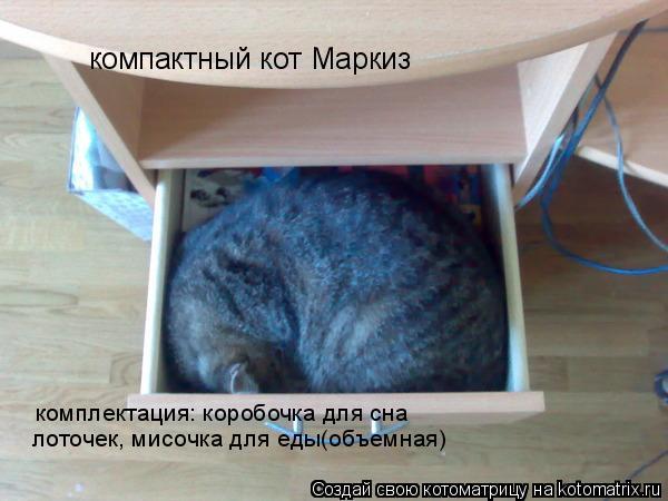 Котоматрица: компактный кот Маркиз комплектация: коробочка для сна лоточек, мисочка для еды(объемная)