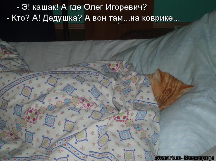 Котоматрица: - Э! кашак! А где Олег Игоревич?  - Кто? А! Дедушка? А вон там...на коврике...