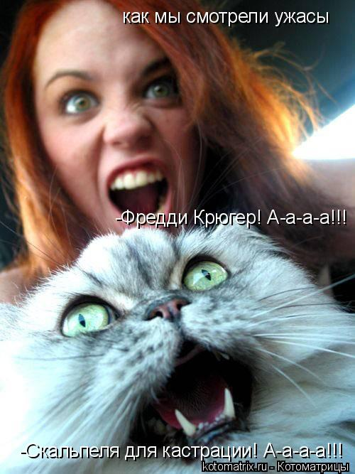Котоматрица: как мы смотрели ужасы -Скальпеля для кастрации! А-а-а-а!!! -Фредди Крюгер! А-а-а-а!!!