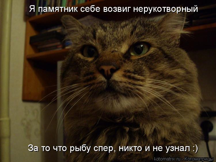 Котоматрица: Я памятник себе возвиг нерукотворный За то что рыбу спер, никто и не узнал :)