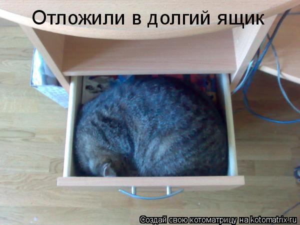 Котоматрица: Отложили в долгий ящик