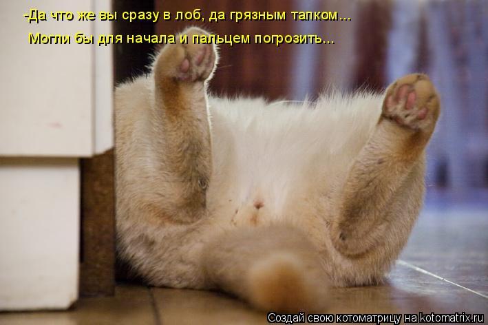 Котоматрица: -Да что же вы сразу в лоб, да грязным тапком... Могли бы для начала и пальцем погрозить...