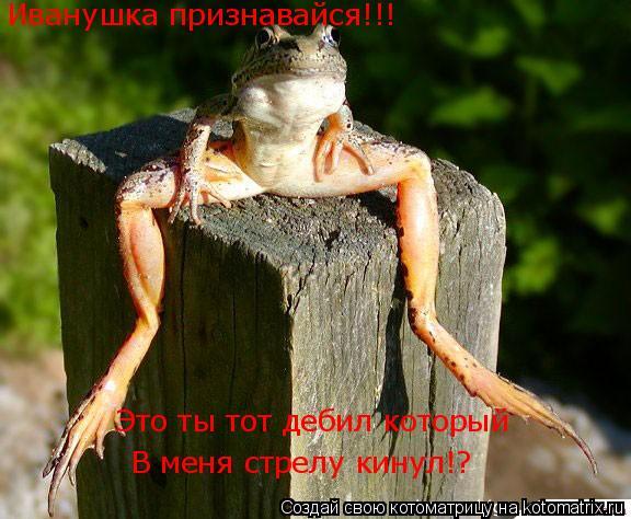 Котоматрица: Иванушка признавайся!!! Это ты тот дебил который  В меня стрелу кинул!?