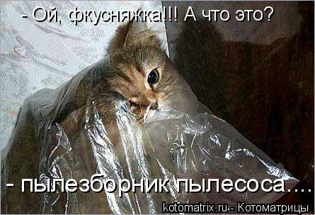 Котоматрица: - Ой, фкусняжка!!! А что это? - пылезборник пылесоса......