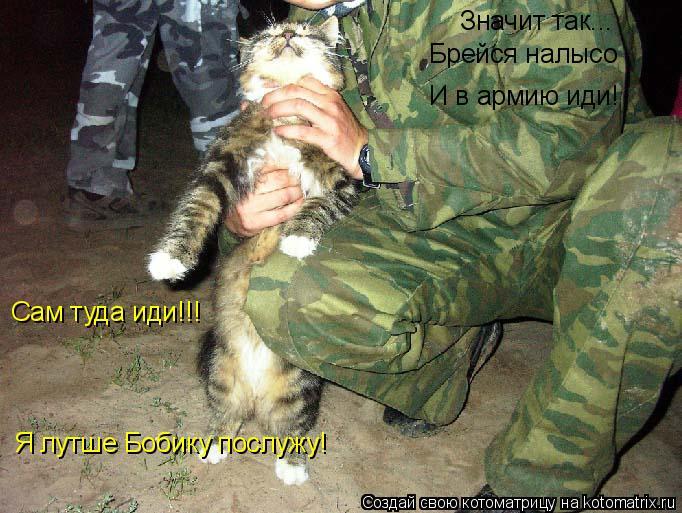 Котоматрица: Значит так... Брейся налысо Сам туда иди!!! И в армию иди! Я лутше Бобику послужу!