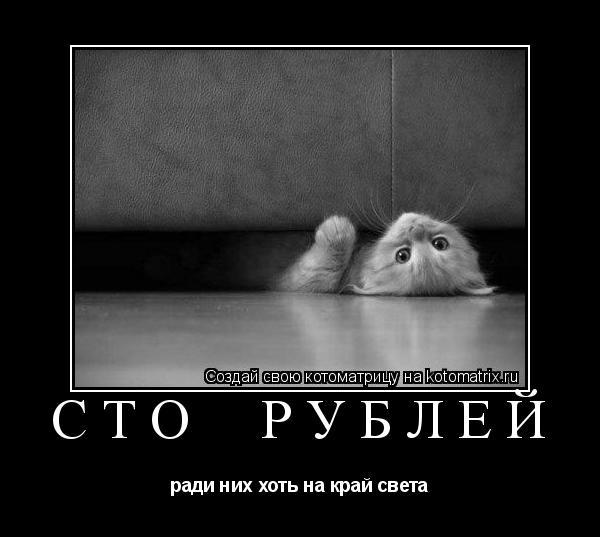 Котоматрица: сто  рублей ради них хоть на край света