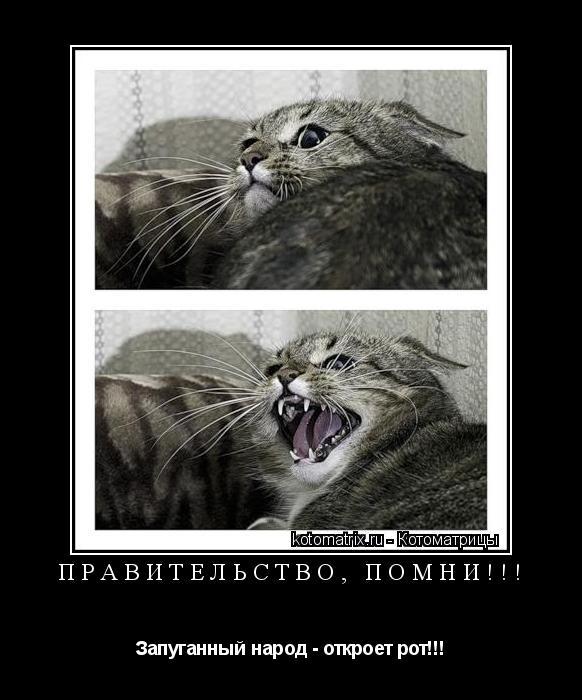 Котоматрица: Правительство, помни!!! Запуганный народ - откроет рот!!!