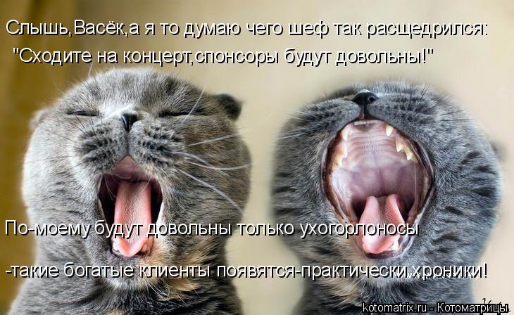 """Котоматрица: Слышь,Васёк,а я то думаю чего шеф так расщедрился: """"Сходите на концерт,спонсоры будут довольны!"""" По-моему будут довольны только ухогорлоносы"""