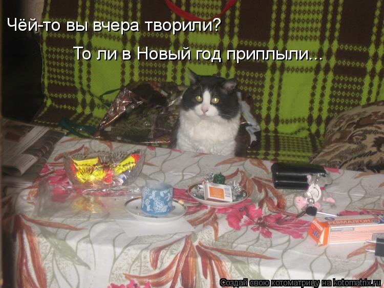 Котоматрица: Чёй-то вы вчера творили? То ли в Новый год приплыли...