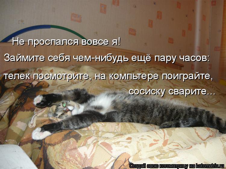 Котоматрица: Не проспался вовсе я! Займите себя чем-нибудь ещё пару часов: телек посмотрите, на компьтере поиграйте, сосиску сварите...