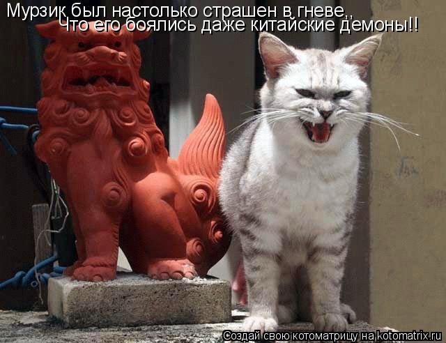Котоматрица: Мурзик был настолько страшен в гневе,, Что его боялись даже китайские демоны!!