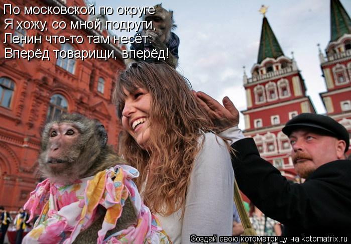 Котоматрица: По московской по округе Я хожу, со мной подруги, Ленин что-то там несёт: Вперёд товарищи, вперёд!