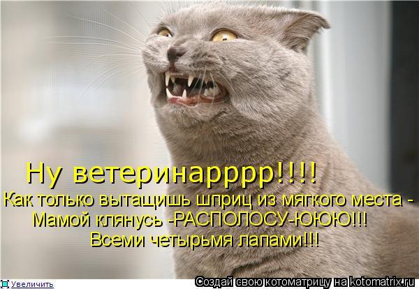 Котоматрица: Ну ветеринарррр!!!! Как только вытащишь шприц из мягкого места - Мамой клянусь -РАСПОЛОСУ-ЮЮЮ!!! Всеми четырьмя лапами!!!