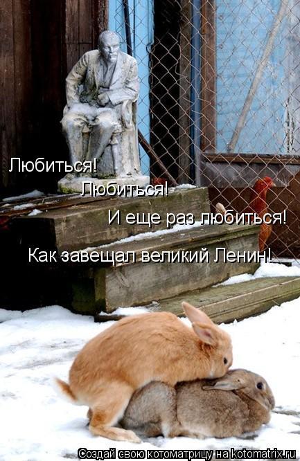 Котоматрица: Любиться! Любиться! И еще раз любиться! Как завещал великий Ленин!