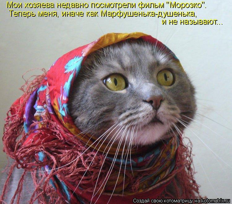 """Котоматрица: Мои хозяева недавно посмотрели фильм """"Морозко"""". Теперь меня, иначе как Марфушенька-душенька, и не называют..."""