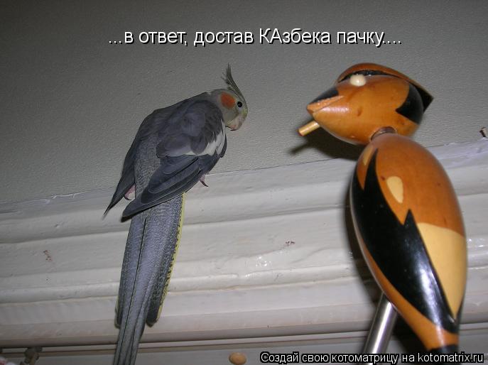 Котоматрица: ...в ответ, достав КАзбека пачку....