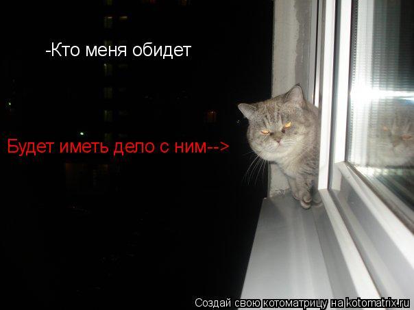 Котоматрица: -Кто меня обидет Будет иметь дело с ним-->