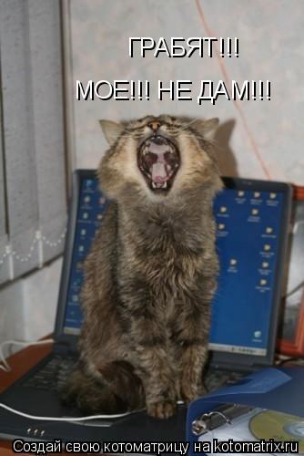 Котоматрица: МОЕ!!! НЕ ДАМ!!! ГРАБЯТ!!!