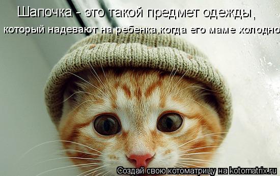 Котоматрица: Шапочка - это такой предмет одежды , который надевают на ребенка,когда его маме холодно.