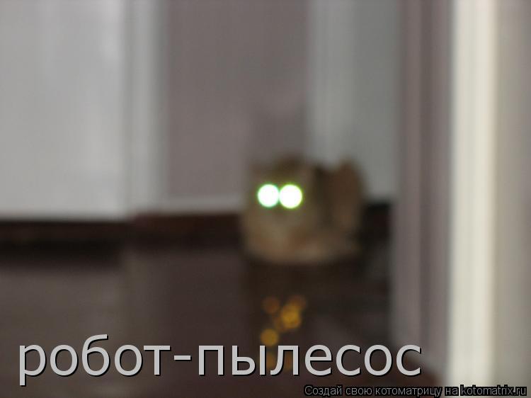 Котоматрица: робот-пылесос