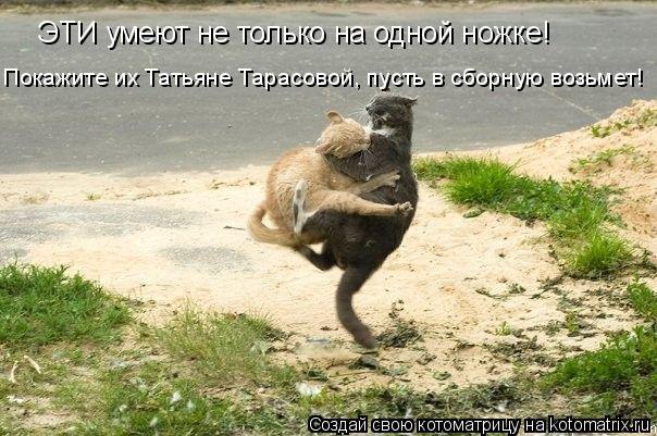 Котоматрица: ЭТИ умеют не только на одной ножке! Покажите их Татьяне Тарасовой, пусть в сборную возьмет!