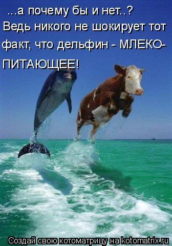 Котоматрица: ...а почему бы и нет..? Ведь никого не шокирует тот факт, что дельфин - МЛЕКО- ПИТАЮЩЕЕ!