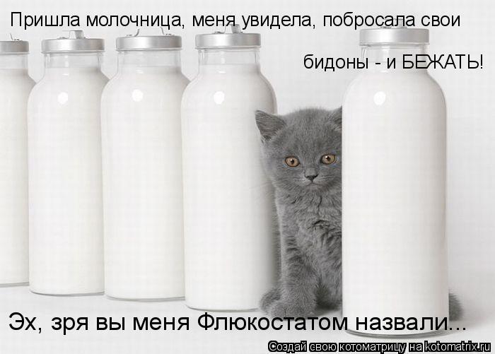 Котоматрица: Пришла молочница, меня увидела, побросала свои  бидоны - и БЕЖАТЬ! Эх, зря вы меня Флюкостатом назвали...