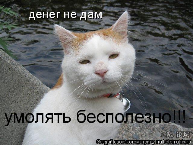 Котоматрица: денег не дам умолять бесполезно!!!