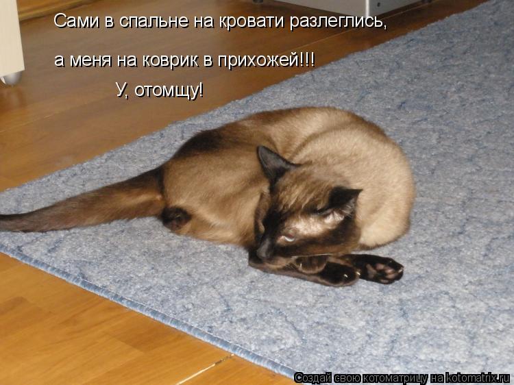 Котоматрица: Сами в спальне на кровати разлеглись, а меня на коврик в прихожей!!! У, отомщу!