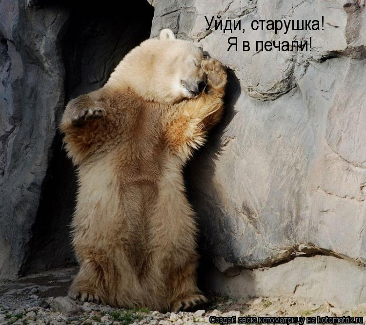 Котоматрица: Уйди, старушка!  Я в печали!