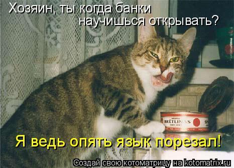 Котоматрица: Хозяин, ты когда банки  научишься открывать? Я ведь опять язык порезал!