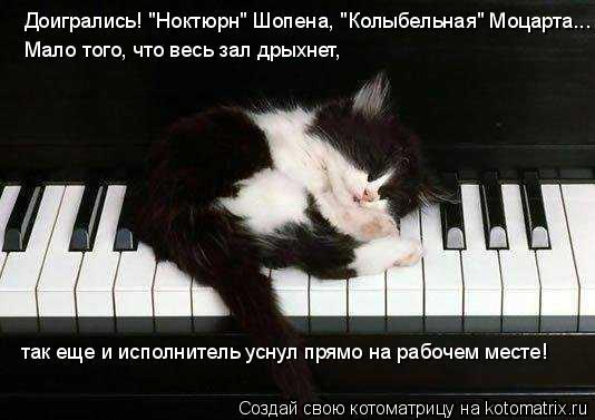 """Котоматрица: Доигрались! """"Ноктюрн"""" Шопена, """"Колыбельная"""" Моцарта... Мало того, что весь зал дрыхнет, так еще и исполнитель уснул прямо на рабочем месте!"""