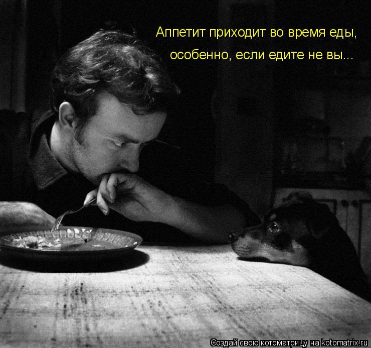 Котоматрица: Аппетит приходит во время еды, особенно, если едите не вы...