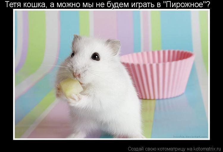 """Котоматрица: Тетя кошка, а можно мы не будем играть в """"Пирожное""""?"""