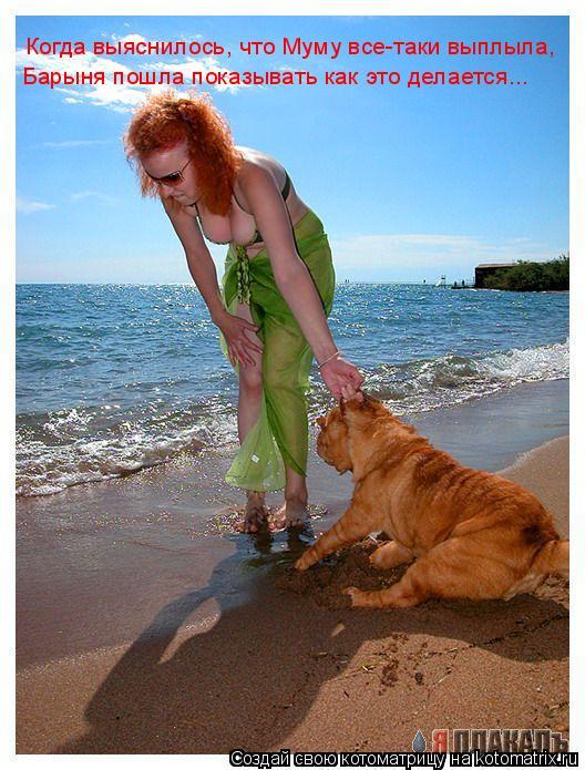 Котоматрица: Когда выяснилось, что Муму все-таки выплыла, Барыня пошла показывать как это делается...