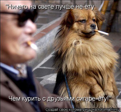 """Котоматрица: """"Ничего на свете лучше не-ету Чем курить с друзьями сигаре-ету!"""""""