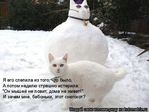 """Котоматрица: Я его слепила из того, что было, А потом неделю страшно истерила: """"Он мышей не ловит, дома не живет!"""" И зачем мне, бабоньки, этот снегокот?"""