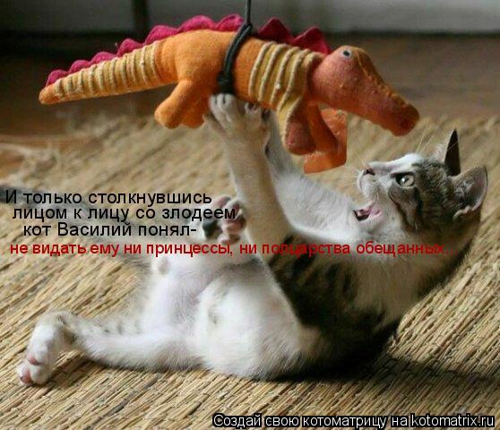 Котоматрица: И только столкнувшись  лицом к лицу со злодеем кот Василий понял- не видать ему ни принцессы, ни полцарства обещанных...