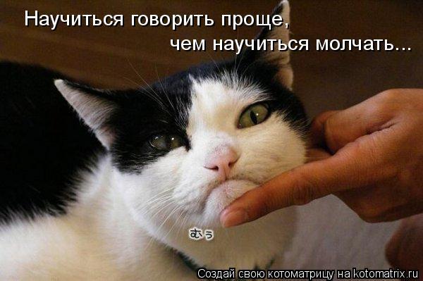 Котоматрица: Научиться говорить проще, чем научиться молчать...