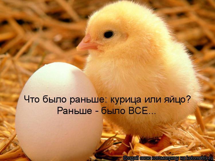 Котоматрица: Что было раньше: курица или яйцо? Раньше - было ВСЕ...