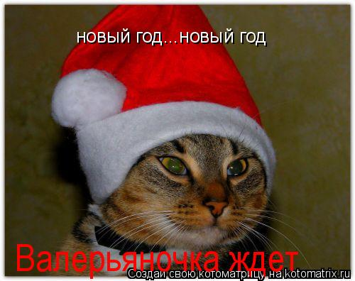 Котоматрица: новый год...новый год Валерьяночка ждет