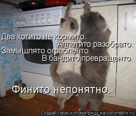 Котоматрица: Два котито не кормито. Аппетито разобрато. Замышлято ограбленто. В бандито превращенто. Финито непонятно.