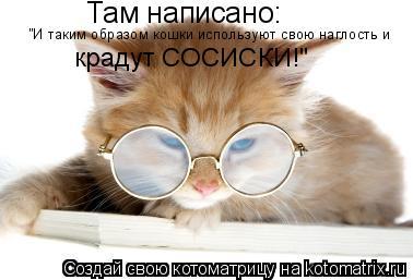 """Котоматрица: Там написано: """"И таким образом кошки используют свою наглость и крадут СОСИСКИ!"""""""