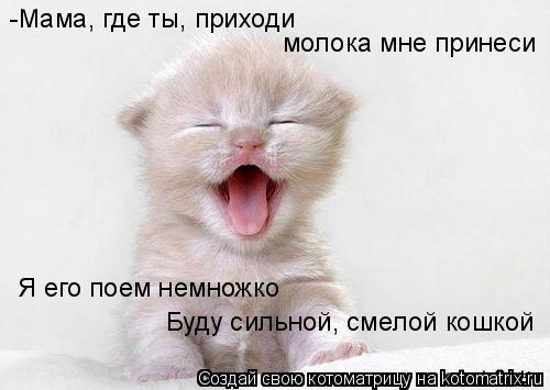 Котоматрица: -Мама, где ты, приходи молока мне принеси Я его поем немножко Буду сильной, смелой кошкой