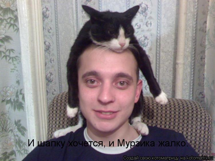 Котоматрица: И шапку хочется, и Мурзика жалко.