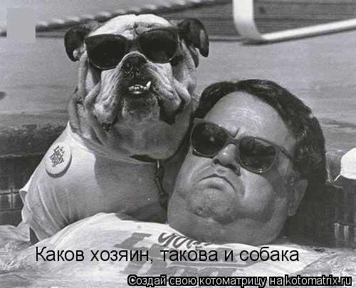 Котоматрица: Каков хозяин, такова и собака