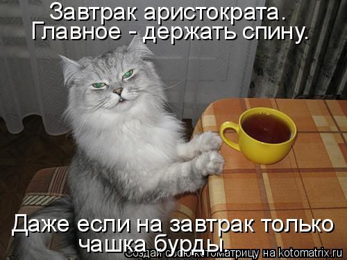 Котоматрица: Завтрак аристократа. Главное - держать спину. Даже если на завтрак только чашка бурды.